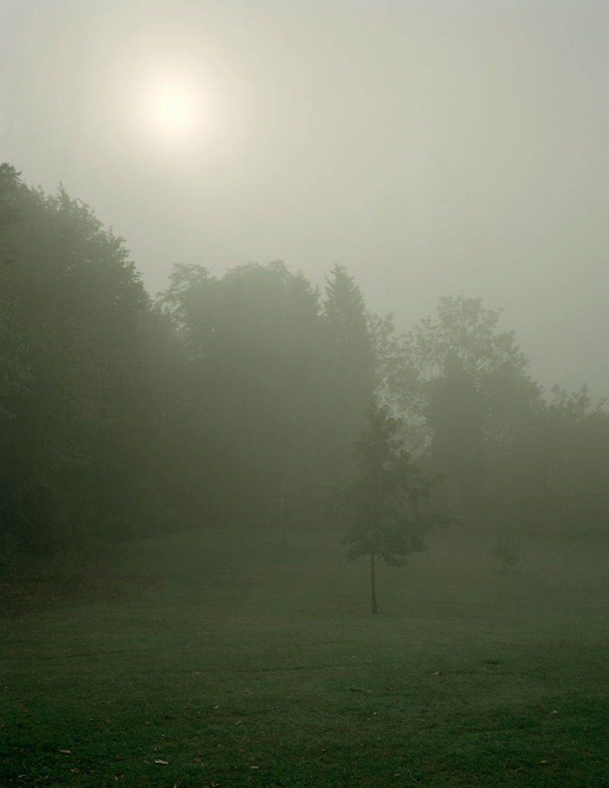 Foggy Morning 3